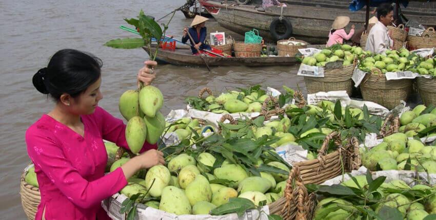 Fascino nascosto del Saigon e Delta di Mekong