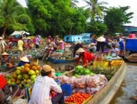Il Delta di Mekong fertile