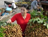 Il Migliore del Delta di Mekong in Vietnam
