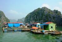 Giorno 3: Hanoi – Baia Di Halong– Pernottamento Nella Crociera (Colazione, Pranzo, Cena)