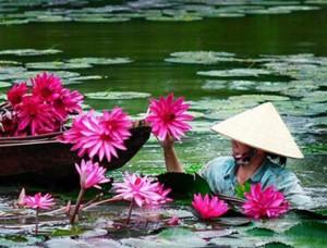 Punti salienti del Vietnam - 9 Giorni / 8 Notti