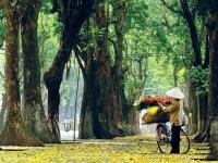Giorno 1 : Arrivo ad Hanoi