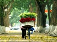 Giorno 1: Arrivo a Hanoi