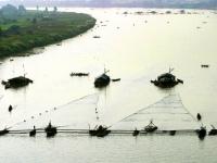 Giorno 19: Lungo il Delta del Mekong (colazione, pranzo)