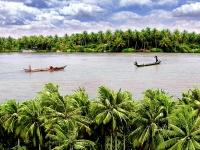 Giorno 4: Delta di Mekong (Colazione, pranzo)