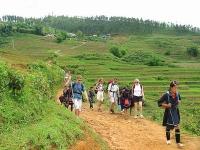 Giorno 4: Sapa - Trekking Per Una Scoperta Dei Villaggi Delle Minoranze Etniche (Colazione, Pranzo,Cena E Pernottamento In Homestay)