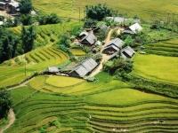 Giorno 3: Visita Dei Mercati Locali – Trekking Y Linh Ho, Lao Chai (Colazione, Pranzo, Cena)